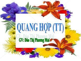 Bài giảng Sinh học Lớp 6 - Bài 21: Quang hợp (Tiếp) - Đào Thị Phương Mai