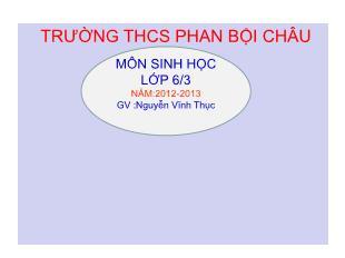 Bài giảng Sinh học Lớp 6 - Tiết 41: Hạt và các bộ phận của hạt - Năm học 2012-2013 - Nguyễn Vĩnh Thục